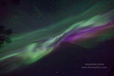 Astrophotographer Dora Miller sent in a photo of an auroral display over Alaska, taken April 20, 2014. Miller is based in Talkeetna, AK.