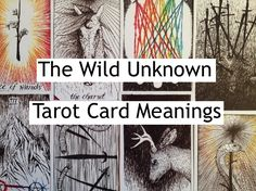 An index of all the Wild Unknown tarot card meaning posts available so far (updated regularly): http://happyfishtarot.com/blog/the-wild-unknown-tarot-card-meanings/