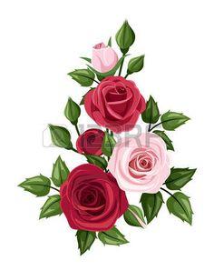 Rose rosse e rosa, illustrazione vettoriale photo
