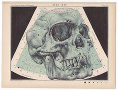 Mark Powell - skull drawn on a star map - ballpoint pen art