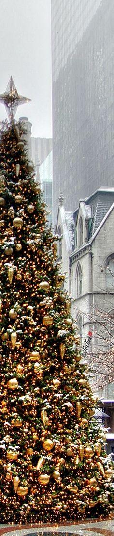 ❈Téa Tosh❈ #Christmas #teatosh 16a