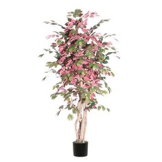 Vickerman 6' Artificial Campania Executive set in Black Pot *** Want to know more, click on the image.