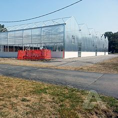 Commercial greenhouse covered with polycarbonate