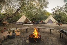 Stout Tent Fall Photoshoot