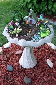 Un jardin miniature dans un abreuvoir à oiseaux
