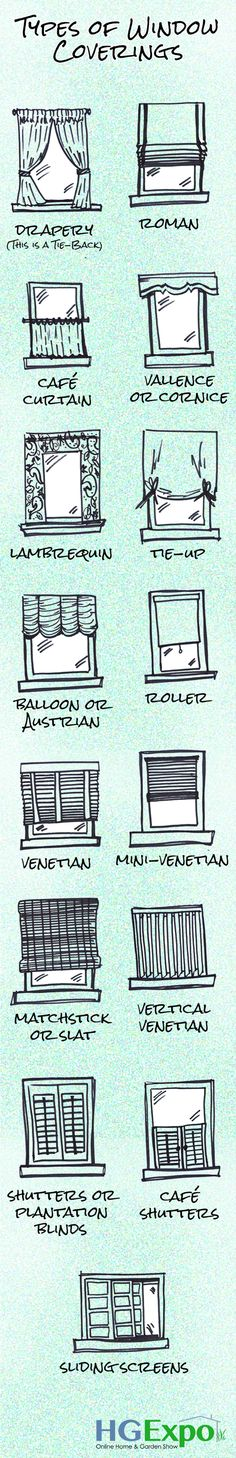 Types of window coverings infographic