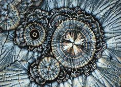 Vitamin C under a microscope, no wonder it is good for us! www.facebook.com/loveswish