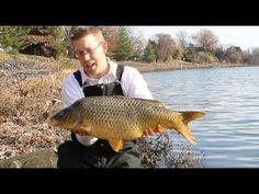 5a507d955f5e Carp fishing on my lunch break - crucian carp and common carp - YouTube   carpfishingrig
