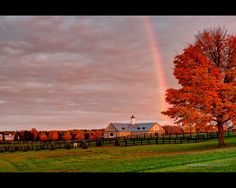 A nice rainbow over the colorful trees in Aurora, Ont. Canada