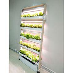 Indoor Hydroponic Gardening Systems - OPCOM Farm