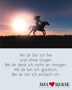 #pferdemächen #ilovehorses #pferde #pferdeliebe Horse Quotes, Dressage, Flower Power, Wise Words, Equestrian, Best Friends, Passion, Horses, Animals
