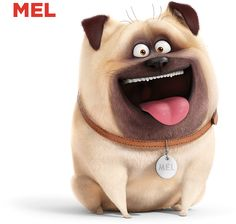 The Secret Life Of Pets opens July We are donating the first pair of tickets to Pat Hose, of Rescue of She deserves a break and a good laugh, so she will see an advance screening this week. Anime Animals, Animals And Pets, Cute Animals, Pugs, Pets Movie, Bob Ross Paintings, Puppy Day, Dog Books, Secret Life Of Pets