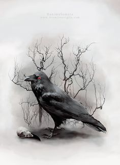 Raven by dormiensvigila on deviantART
