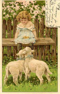 Vintage postcard (Illustration by Alfred Mailick) - 1910's