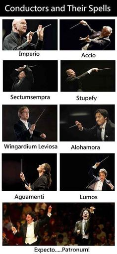 For all you Harry Potter fans out there! We like Dudamel's spell the best.
