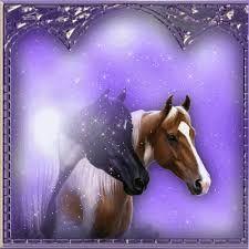"""Résultat de recherche d'images pour """"image cheval féérique"""""""