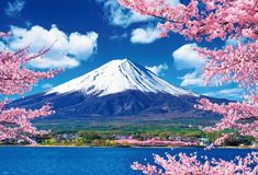 Mount Fuji is the highest volcanic mountain in Japan and considered as Holy Mountain. Fuji Mountain is a symbol of Japan and the most popular tourist site. Cool Pictures Of Nature, Nature Images, Beautiful Pictures, Beautiful World, Beautiful Places, Mount Fuji Japan, Fuji Mountain, Monte Fuji, Japan Holidays