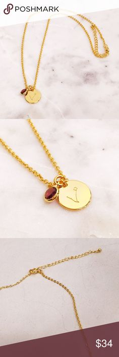 Astrology Birthstone Necklace 22k gold chain and astrological symbol with semi precious birthstone set in gold setting. Gorgeous necklace for day to evening wear. Pick from the 12 zodiac signs. 18 inch adjustable chain. 5 Element Jewelry  Jewelry Necklaces