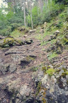 Pirineos 2013