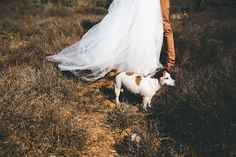 Eastern-Cape-Wedding-Kuier-Farm-mountains-Karlien-Francois-102.jpg