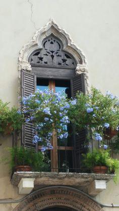 #Balcone #fiorito a #Padova
