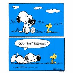 "Snoopy ❤ Say ""birdseed""                                                                                                                                                                                 More"