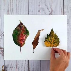 watercolor illustration by waldfrau_art Nature Illustrations, Watercolor Illustration, Leaf Tattoos, Autumn Leaves, Colours, Art, Watercolor Painting, Art Background, Fall Leaves