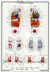 cartel podologo miniatura