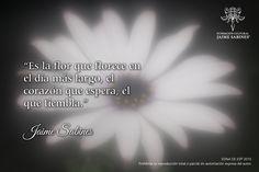 Fotografía 3 Edna De Es