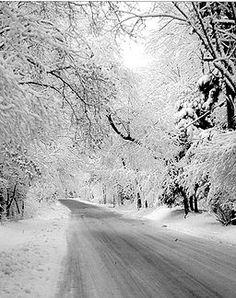 Laurel Highlands - Linn Run Road.jpg