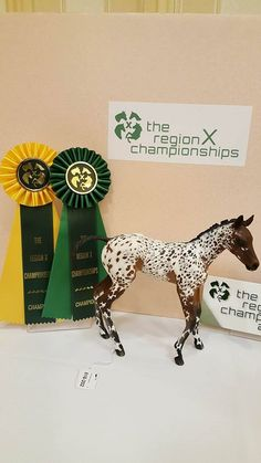 big win at 2016 Region 10 Regionals by Erelin owned by Taylor Rose (photo by Taylor Rose and used with permission).  Large Breyer Spring Foal painted bay appaloosa by Arcadian Creations.  Join us on Facebook - Sunshine's Creative Endeavors