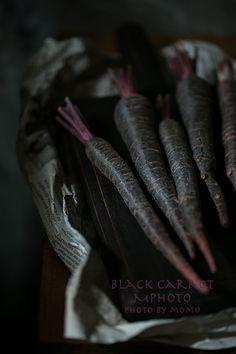 Purple Carrots by MPhoto