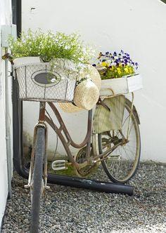 Frescura de primavera | My Leitmotiv