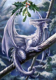 Snow Dragon ~ Anne Stokes