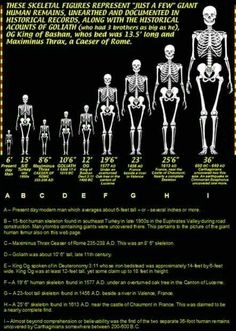 Ancient Aliens, Ancient History, Ufo, Nephilim Giants, Giant Skeleton, Giant People, Ancient Discoveries, Pseudo Science, Book Of Shadows