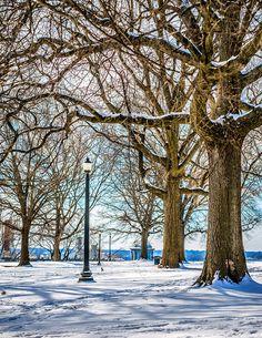 Jefferson Park Snow in Union Hill, Richmond, VA. Taken 2/9/2014 by Bill Dickinson - Sky Noir.                         Flickr - Photo Sharing!