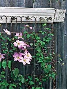 Vintage Style Trellis.  Consider the style of your garden décor when deciding which materials would work best for your trellis. Here, rustic wire fencing supports a clematis plant, lending a nostalgic air to the décor. The trellis is completed with a painted wood casing and rosette block that will age over time.