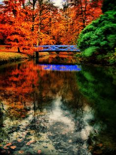 fall reflections; vibrant blue bridge