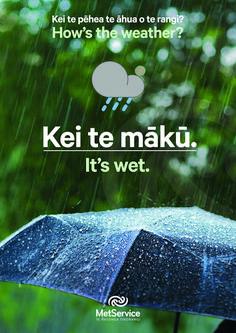 Maori Words, Maori Designs, Sentence Structure, Maori Art, Early Childhood Education, Sentences, New Zealand, Aged Care, Language