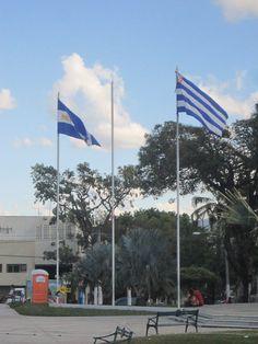 For some reason this display of the San Salvador municipal flag and the El Salvadoran national flag caught my eye...