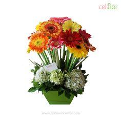 Sorprende a mamá con estos bellos arreglos Celiflor. Vivista nuestra página web www.floristeriaceliflor.com y ¡Ordena ya!