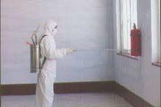 شركة مكافحة النمل الابيض بالدمام(ابادة تامه) 0530202670 |شركة أجياد