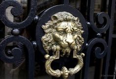 Brass lion's head doorknocker