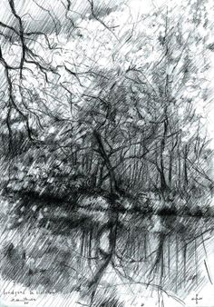 De Horsten - 14-04-14 (2014), graphite on paper (A5) #arts #kunst #Corné #Corne #Akkers #藝術 #アート #искусство #فن  #seni #art #arts