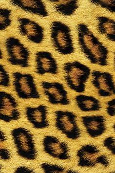 iPhone | http://phonewallpaperideas.blogspot.com