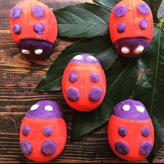 """You don't need to dig through the dirt to find one of these creepy crawlies at Lush, we like creatures big and small. Come in and see our Ladybird…"""