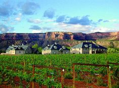 Two Rivers Winery Chateau, Grand Junction, CO. The Two River Winery and Chateau is a world-class compound consisting of manicured grounds, a touch of European styled architecture, sophisticated wine-making technology and luxurious accommodations. Palisade Colorado, Grand Junction Colorado, Colorado Homes, Colorado Trip, Two Rivers, Wine Country, Weekend Getaways, Rocky Mountains, Trip Advisor