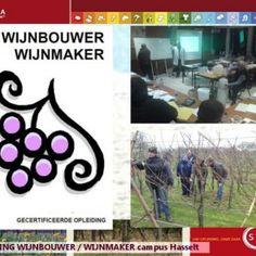 Wijnbouwer - wijnmaker 2014 – 2016 Start september   Hobby -> VAW   Doel Iedereen die professioneel met wijnproductie bezig is of wijnbouwer wil word. http://slidehot.com/resources/syntra-wijnbouw.54738/
