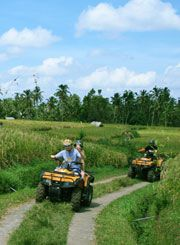 Riding a special off-road track design four wheel motor cycle is an exciting and superb adventure that ATV riding offers for all of you who want to try tandem or single and get your adrenaline up,
