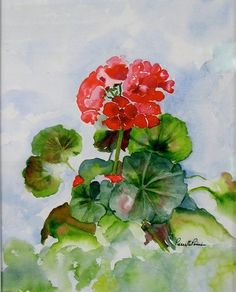 Love Geraniums.  They remind me of my childhood and my Grandmother's balcony planters.  (Water colour)